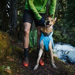 Shop Ruffwear Pat Accessories