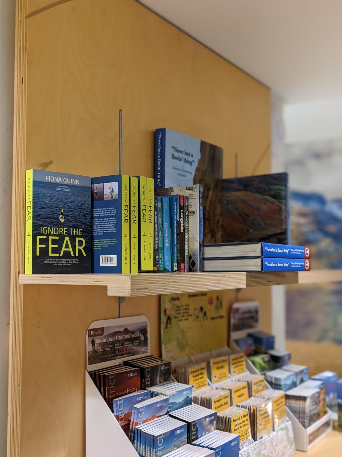 Ignore the fear book