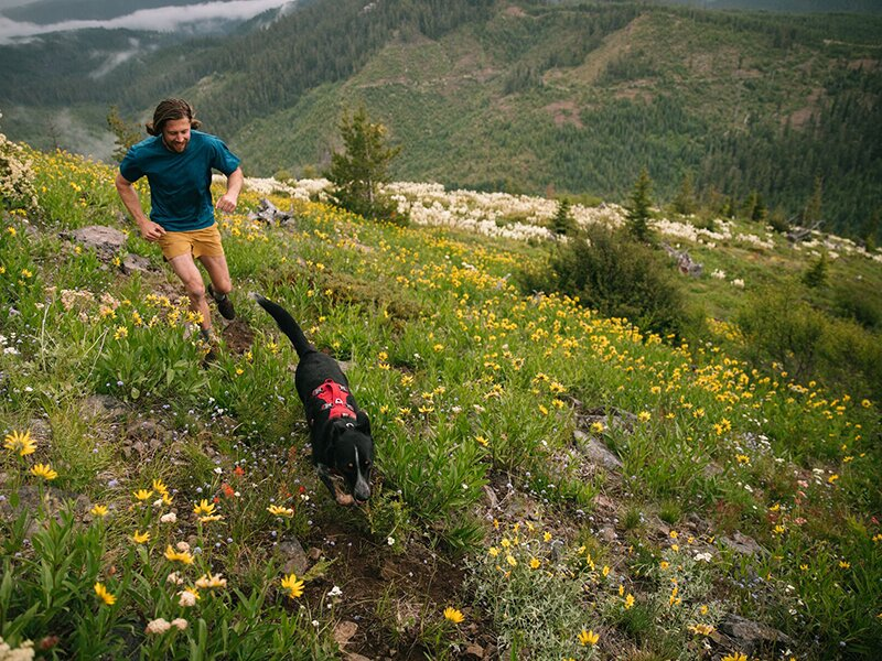 Man and Dog running in Ruffwear