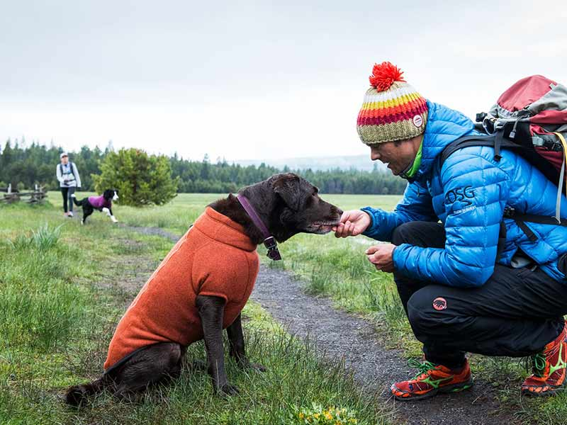 fleece jackets for dogs