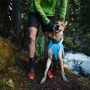 Ruffwear Buying Guide for Your Dog