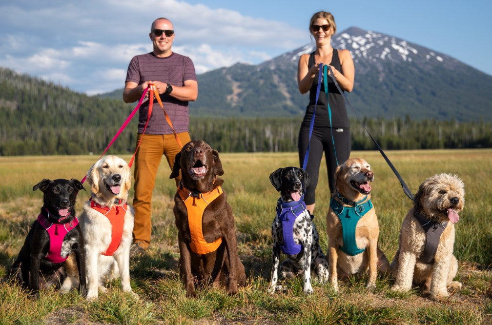 The brand new Front Range dog collection from Ruffwear