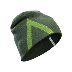 Arcteryx  Crest Toque in Shorepine/Titanite