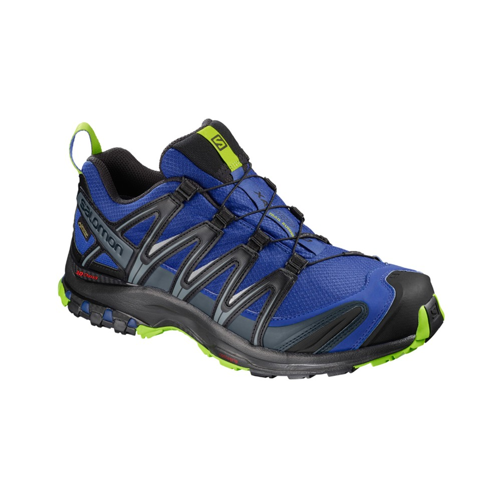 Salomon XA Pro 3D GTX Mens Maz Blue/Bk/Lime Gr