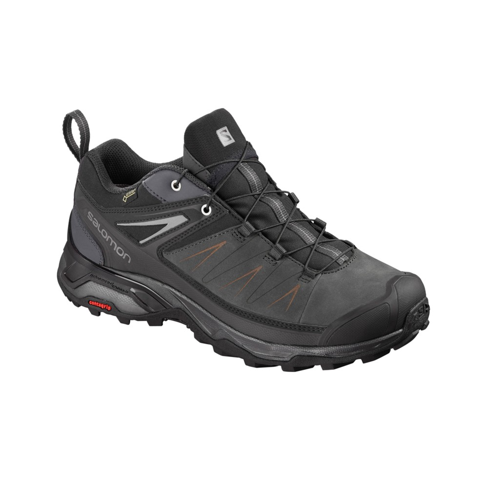 Salomon X Ultra 3 LTR GTX Mens Phantom/Magnet/Quiet Shade