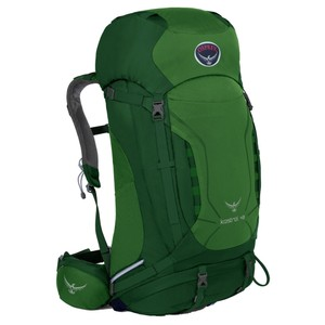 Osprey Kestrel 48 in Jungle Green