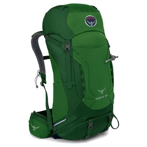 Osprey Kestrel 38 in Jungle Green