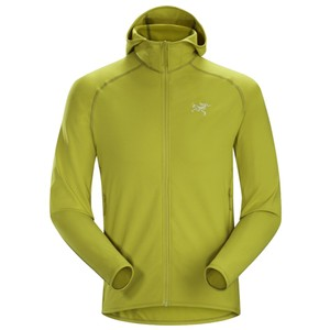 Arcteryx  Adahy Hoody Mens in Everglade