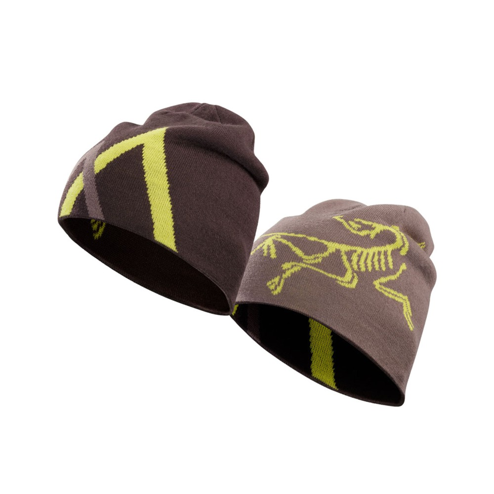 Arcteryx  Arc Mountain Toque Black Willow/Smoked Lilac