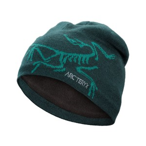Arcteryx  Bird Head Toque in Labyrinth/Yugen