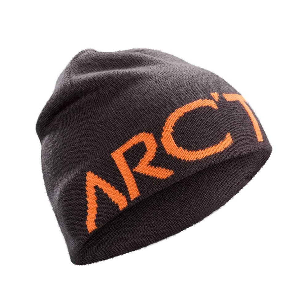 Arcteryx  Word Head Toque Dimma/Awestruck