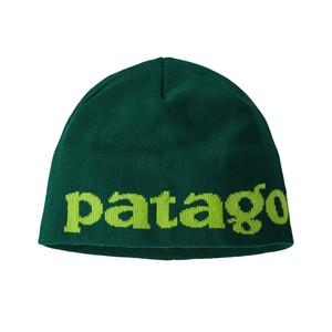 Patagonia Beanie Hat in Logo Belwe:Piki Green