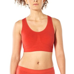 Icebreaker Anatomica Seamless Sport Bra Womens