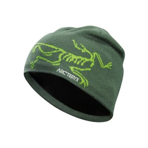 Arcteryx  Bird Head Toque in Shorepine/Titanite