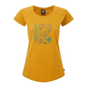 Mountain Equipment Leaf Tee Womens in Acid