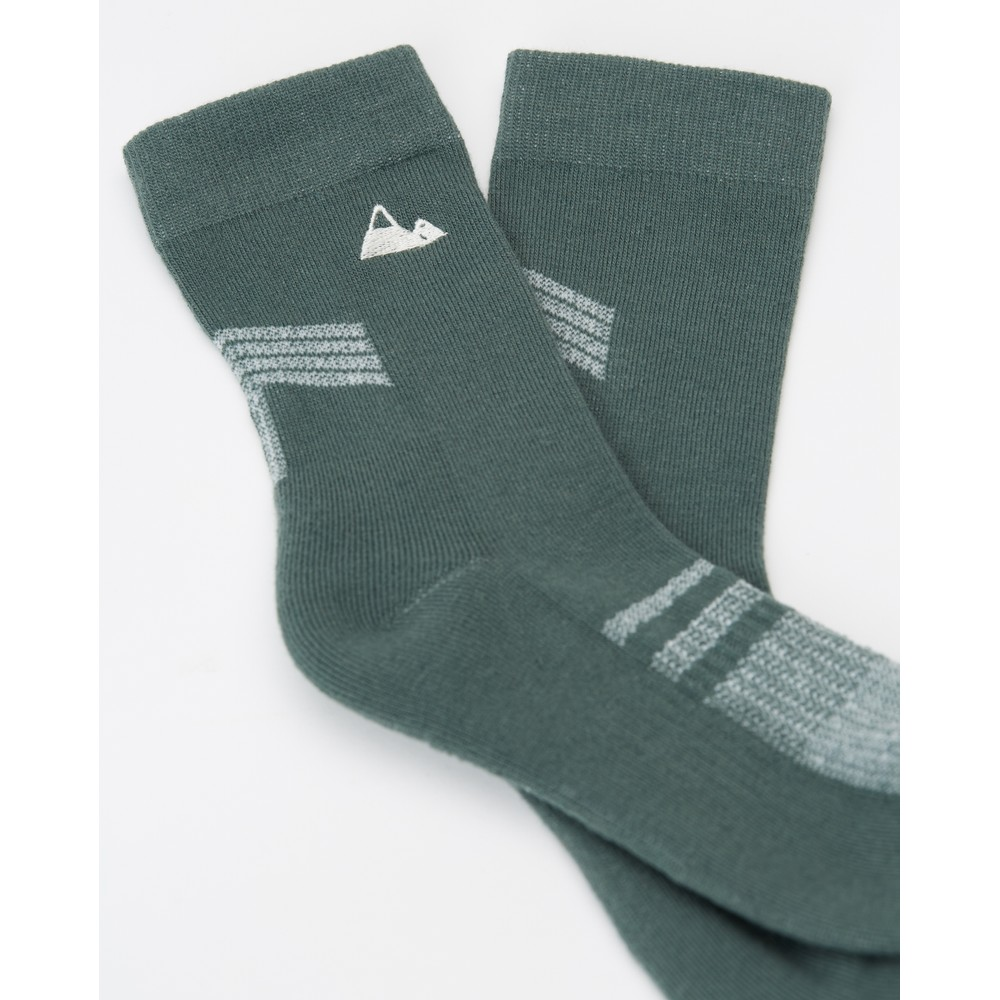 tentree 3-Bottle Daily Sock (2-pack) Planting AOP Multi