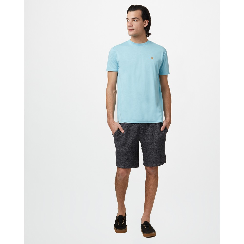 tentree Treeblend Classic T-Shirt Mens Glacier Blue Heather