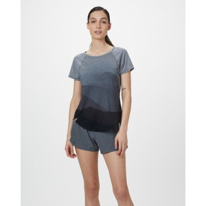 tentree Destination T-Shirt Womens in Rise Grey Heather/Hi Rise Grey - Mountain SUB