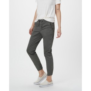 tentree Pacific Pant Womens in Castor Grey