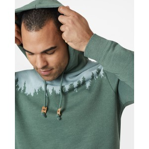 tentree Juniper Hoodie Mens in Forest Green Heather
