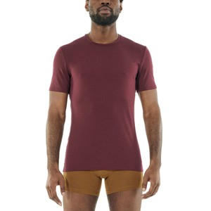 Icebreaker Anatomica SS Crewe Mens in Redwood