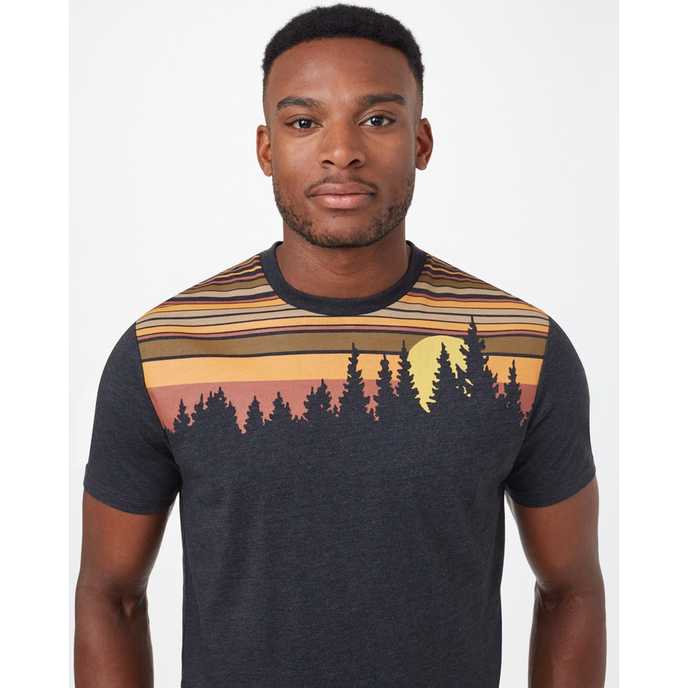 tentree Retro Juniper Classic T-Shirt Mens Meteorite Black Heather