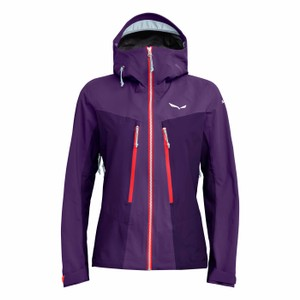 Ortles 3 GTX Pro Jacket Womens Petunia