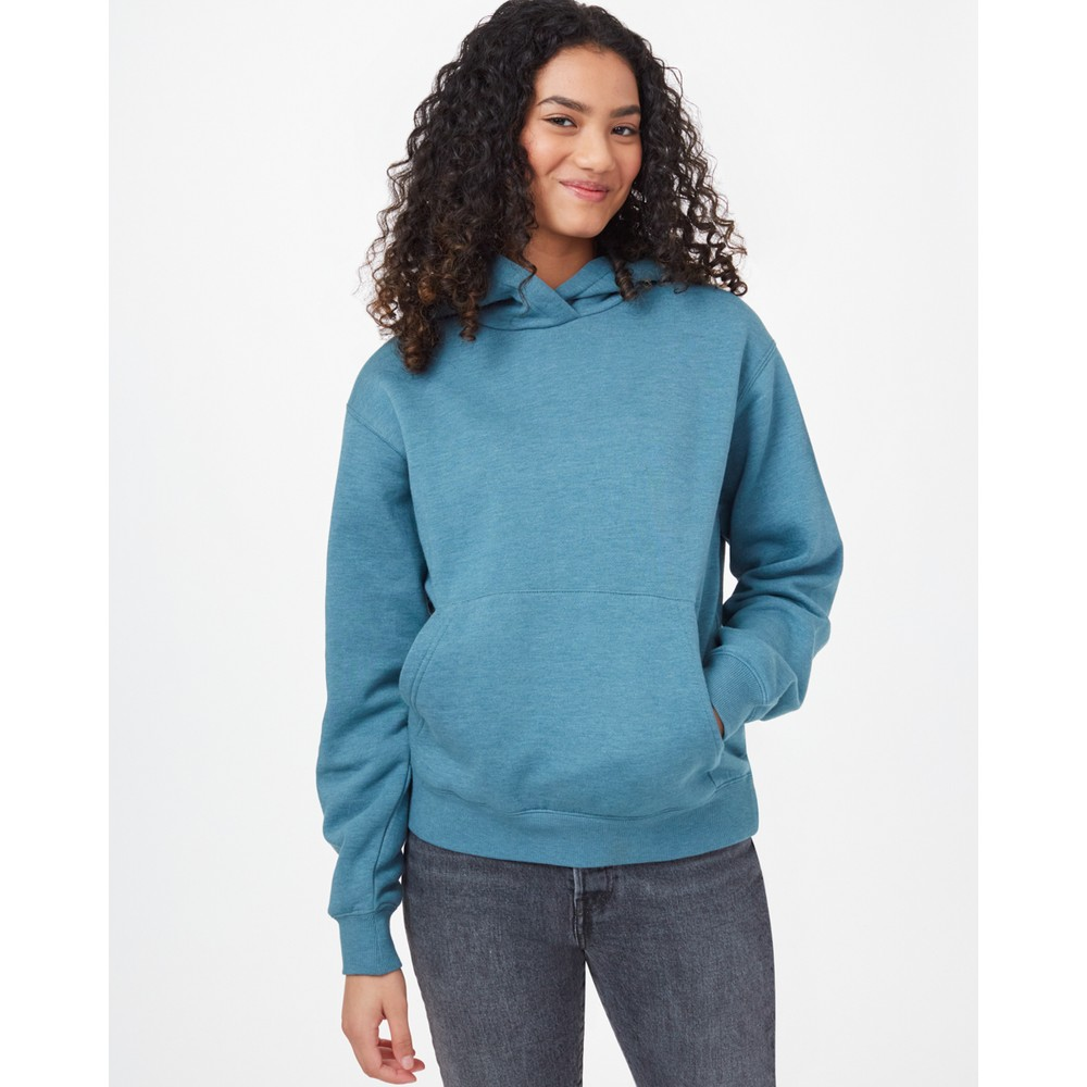 tentree TreeFleece Boyfriend Hoodie Womens Tide Blue Heather