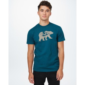 tentree Den Cotton Classic T-Shirt Mens in Deep Teal