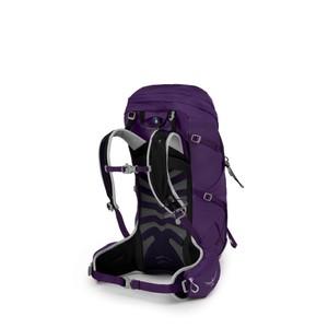 Tempest 34 Violac Purple