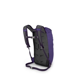 Daylite Cinch Dream Purple