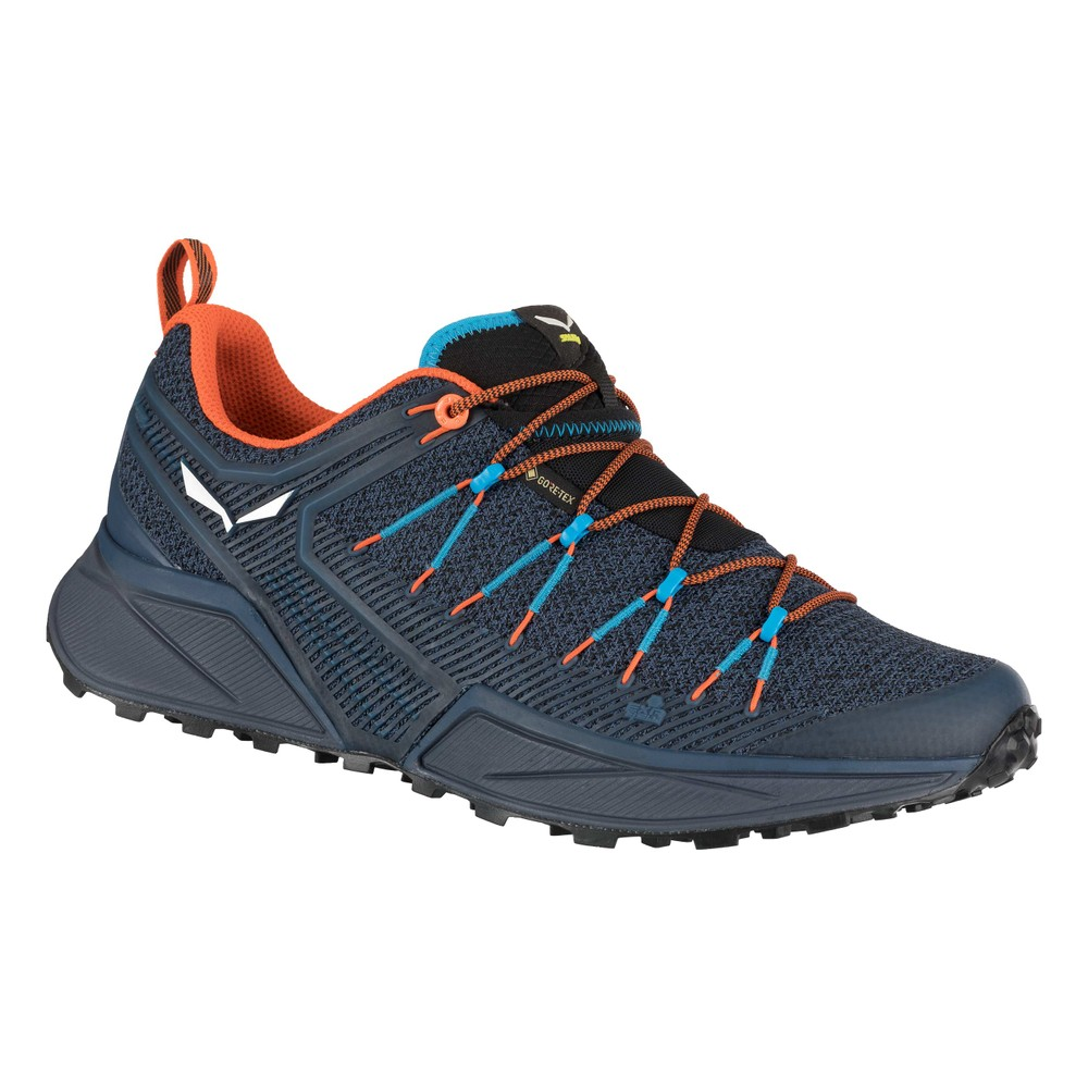 Salewa Dropline GTX Mens Dark Denim/Black
