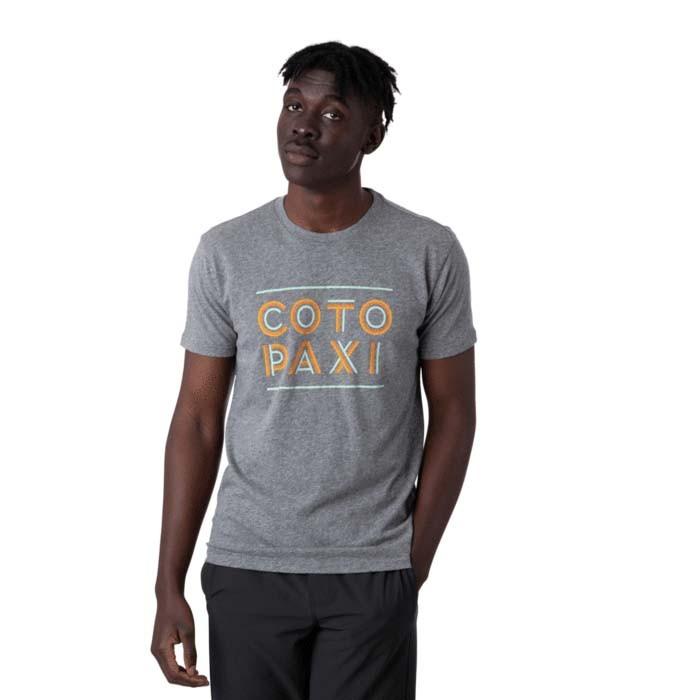 Cotopaxi Stripe T-Shirt Mens Heather Grey