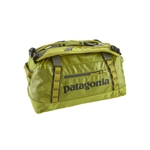 Patagonia Black Hole Duffel 45L in Folios Green