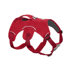 Ruffwear Webmaster Harness in Red Currant