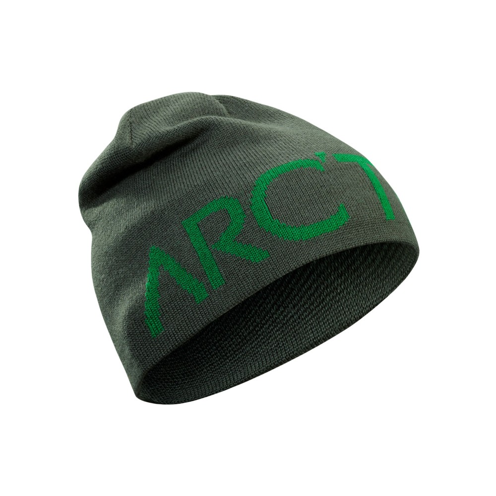 Arcteryx  Word Head Toque Conifer/Canyon
