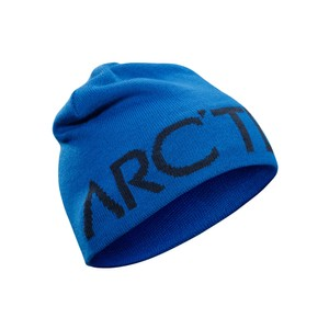 Arcteryx  Word Head Toque in Stellar/Kingfisher